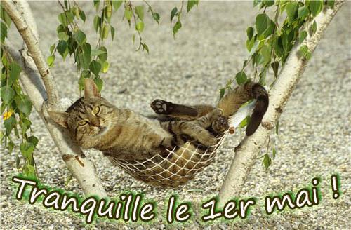 Image du Blog passiondesgifs.centerblog.net